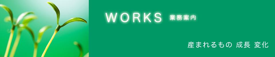 slider-work